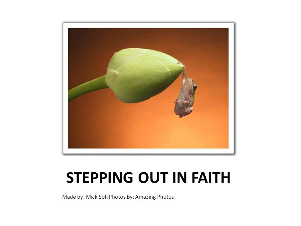 STEPPING OUT IN FAITH Made by: Mick Soh Photos By: Amazing Photos
