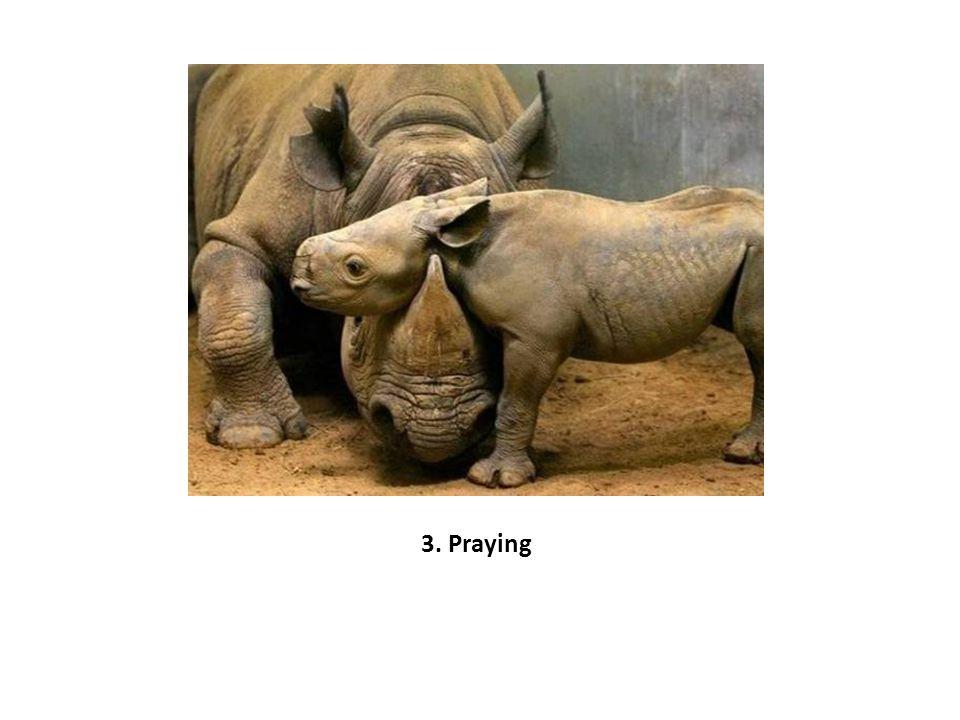 3. Praying