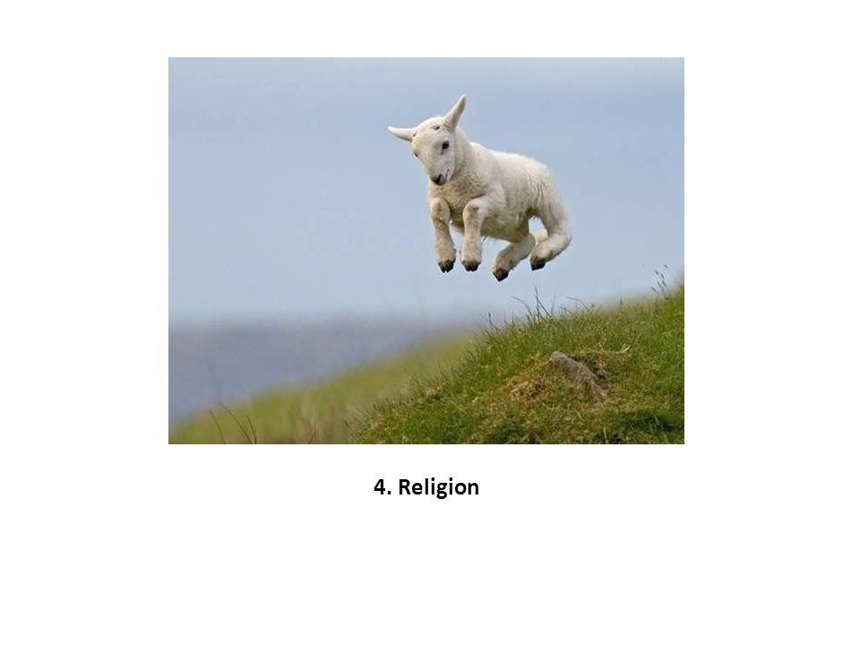 4. Religion
