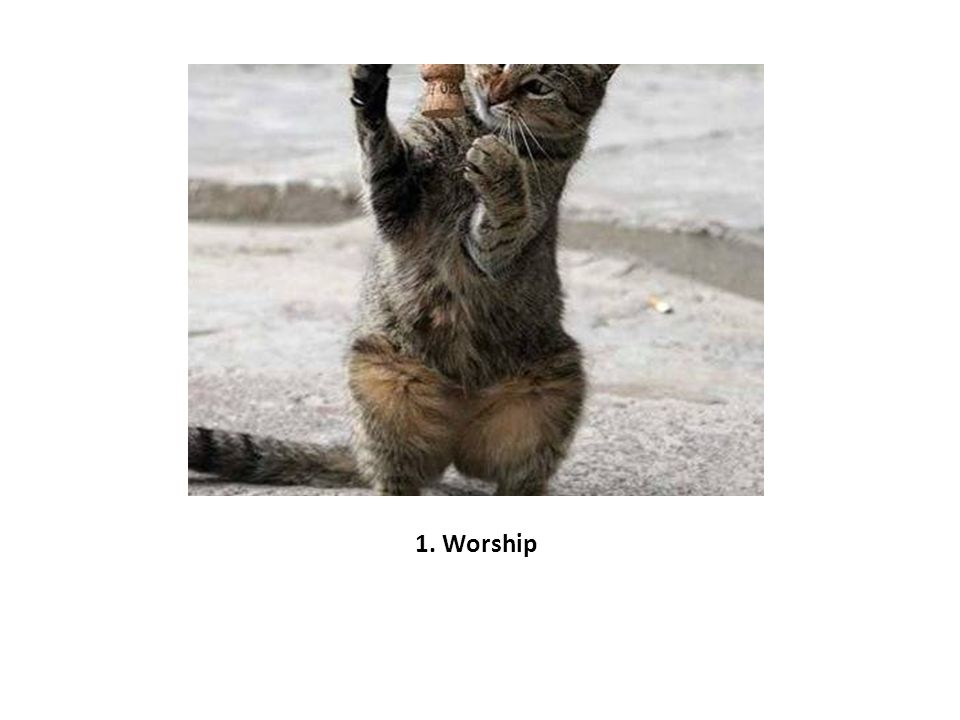 1. Worship