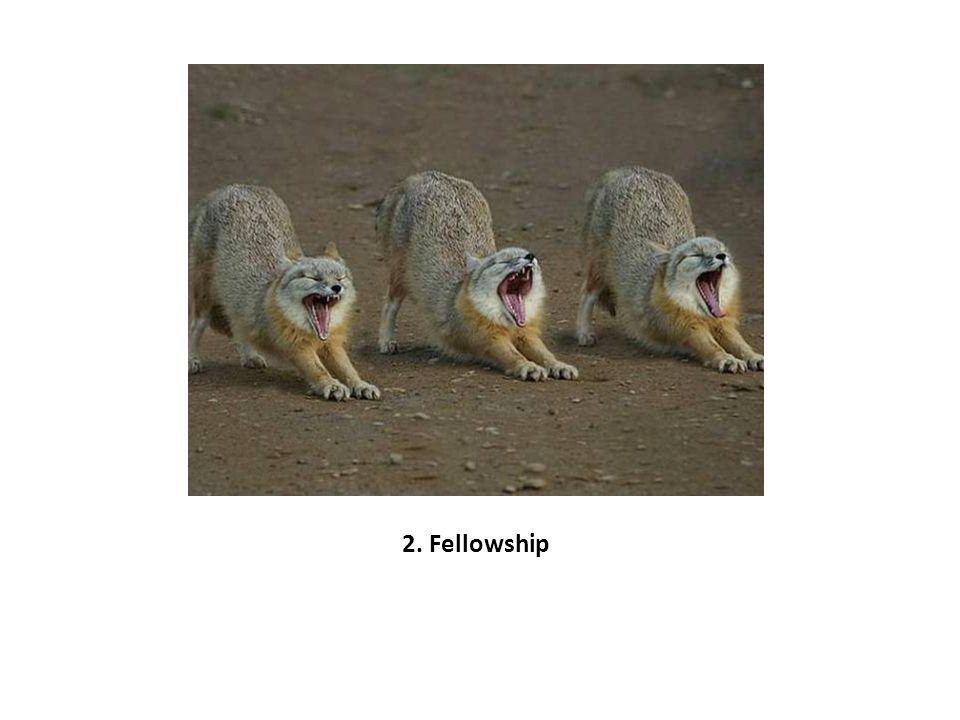 2. Fellowship