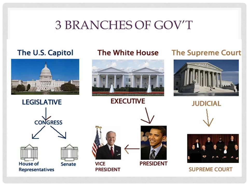 3 BRANCHES OF GOV'T