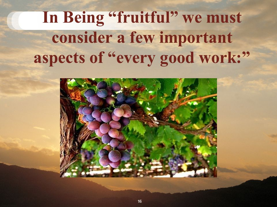 In Being fruitful we must consider a few important aspects of every good work: 16