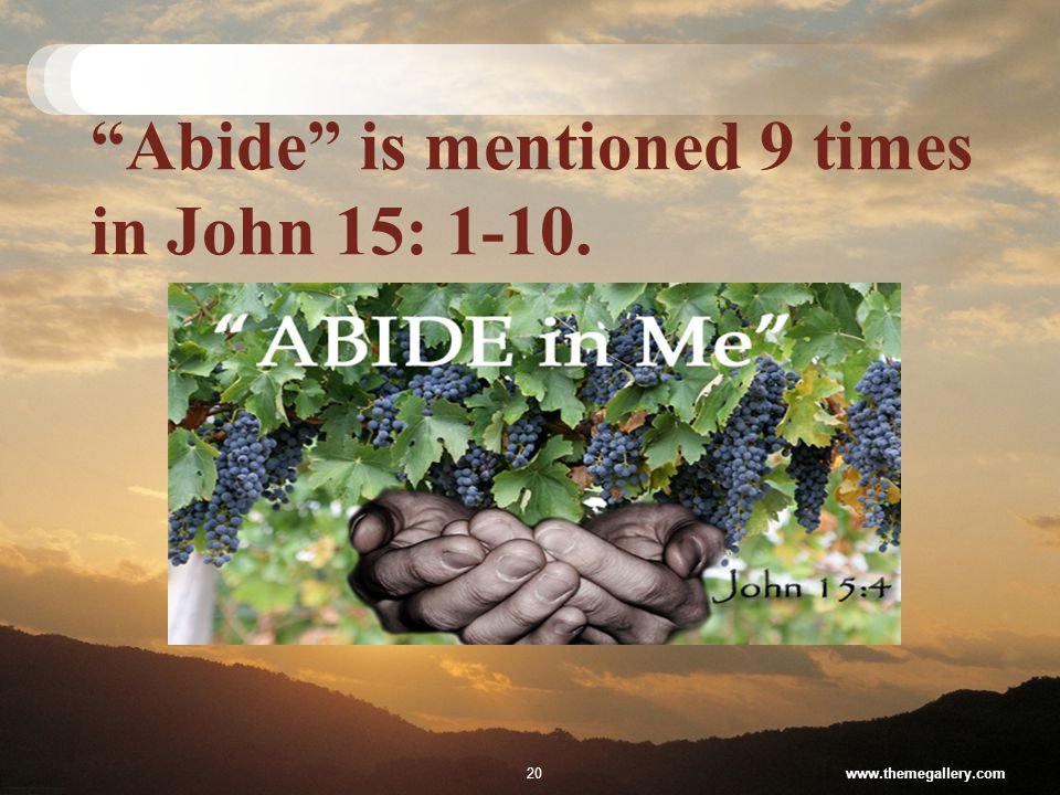 Abide is mentioned 9 times in John 15: 1-10. www.themegallery.com20