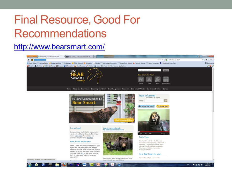 Final Resource, Good For Recommendations http://www.bearsmart.com/