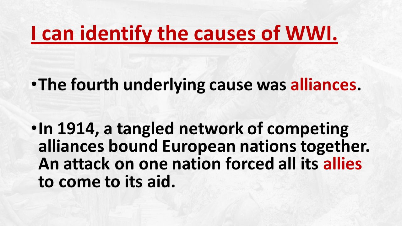 The fourth underlying cause was alliances.