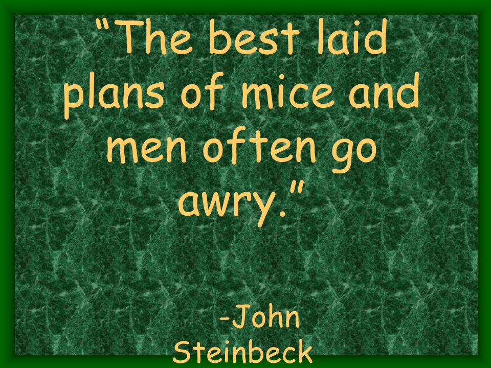 The best laid plans of mice and men often go awry. -John Steinbeck