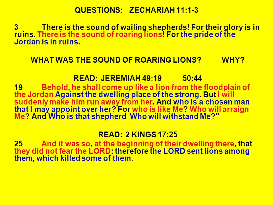 QUESTIONS:ZECHARIAH 11:1-3 3There is the sound of wailing shepherds.