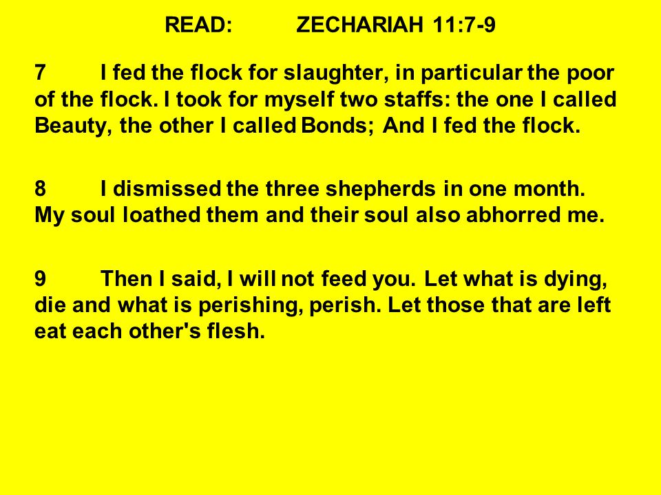 READ:ZECHARIAH 11:7-9 7I fed the flock for slaughter, in particular the poor of the flock.