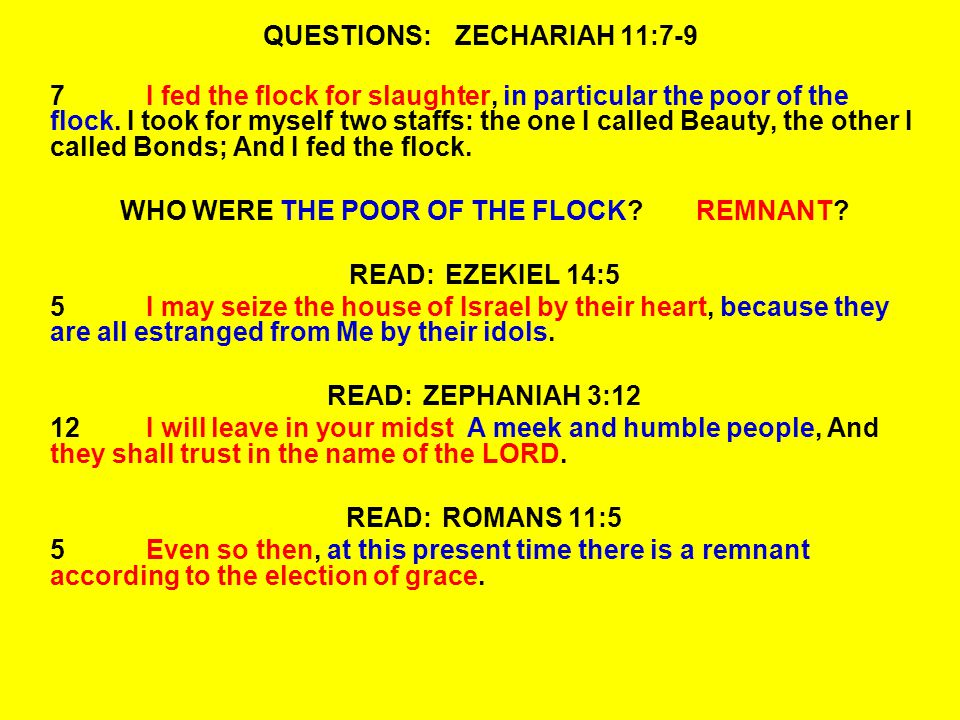 QUESTIONS:ZECHARIAH 11:7-9 7I fed the flock for slaughter, in particular the poor of the flock.