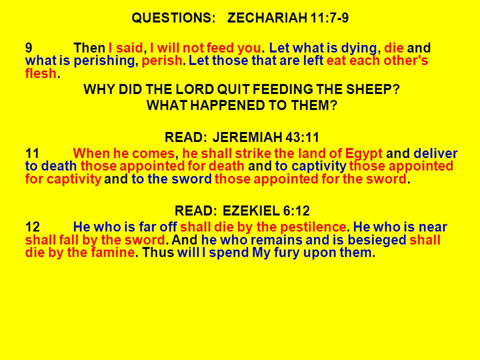 QUESTIONS:ZECHARIAH 11:7-9 9Then I said, I will not feed you.