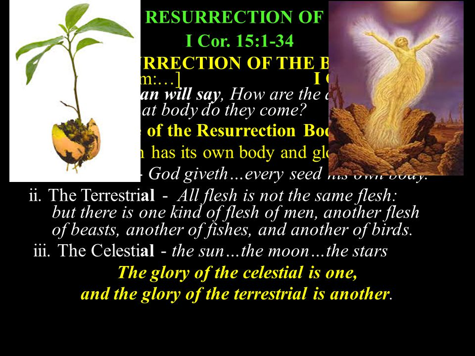 A. THE RESURRECTION OF CHRIST I Cor. 15:1-34 B.