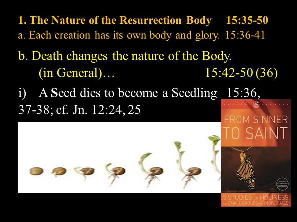1. The Nature of the Resurrection Body15:35-50 a.