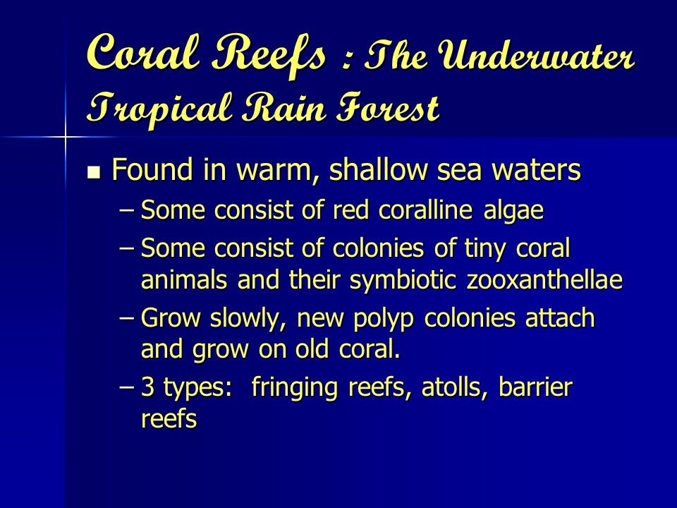 Coral Reefs : The Underwater Tropical Rain Forest Found in warm, shallow sea waters Found in warm, shallow sea waters –Some consist of red coralline algae –Some consist of colonies of tiny coral animals and their symbiotic zooxanthellae –Grow slowly, new polyp colonies attach and grow on old coral.