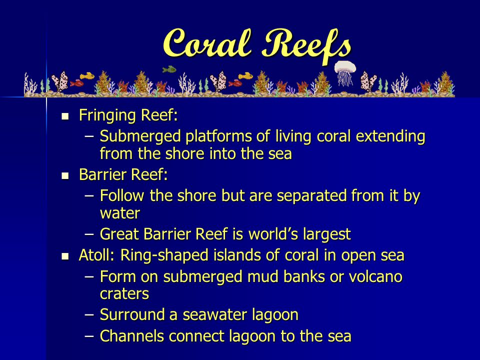 Coral Reefs Fringing Reef: Fringing Reef: –Submerged platforms of living coral extending from the shore into the sea Barrier Reef: Barrier Reef: –Follow the shore but are separated from it by water –Great Barrier Reef is world's largest Atoll: Ring-shaped islands of coral in open sea Atoll: Ring-shaped islands of coral in open sea –Form on submerged mud banks or volcano craters –Surround a seawater lagoon –Channels connect lagoon to the sea