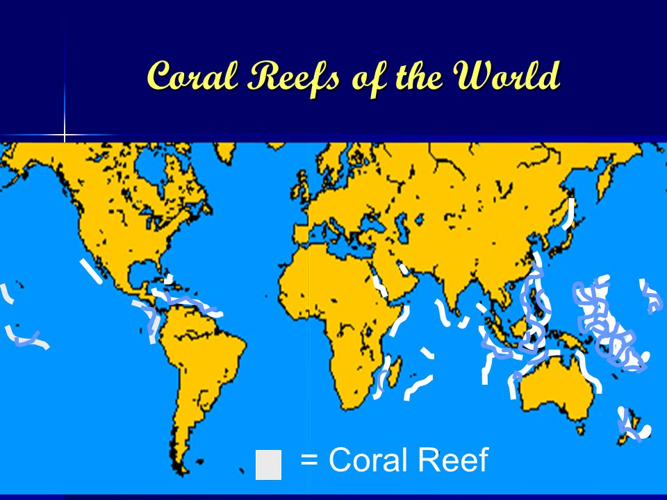 Coral Reefs of the World = Coral Reef