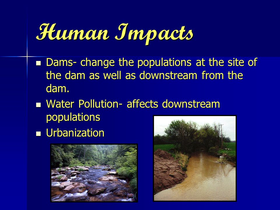 Human Impacts Dams- change the populations at the site of the dam as well as downstream from the dam.