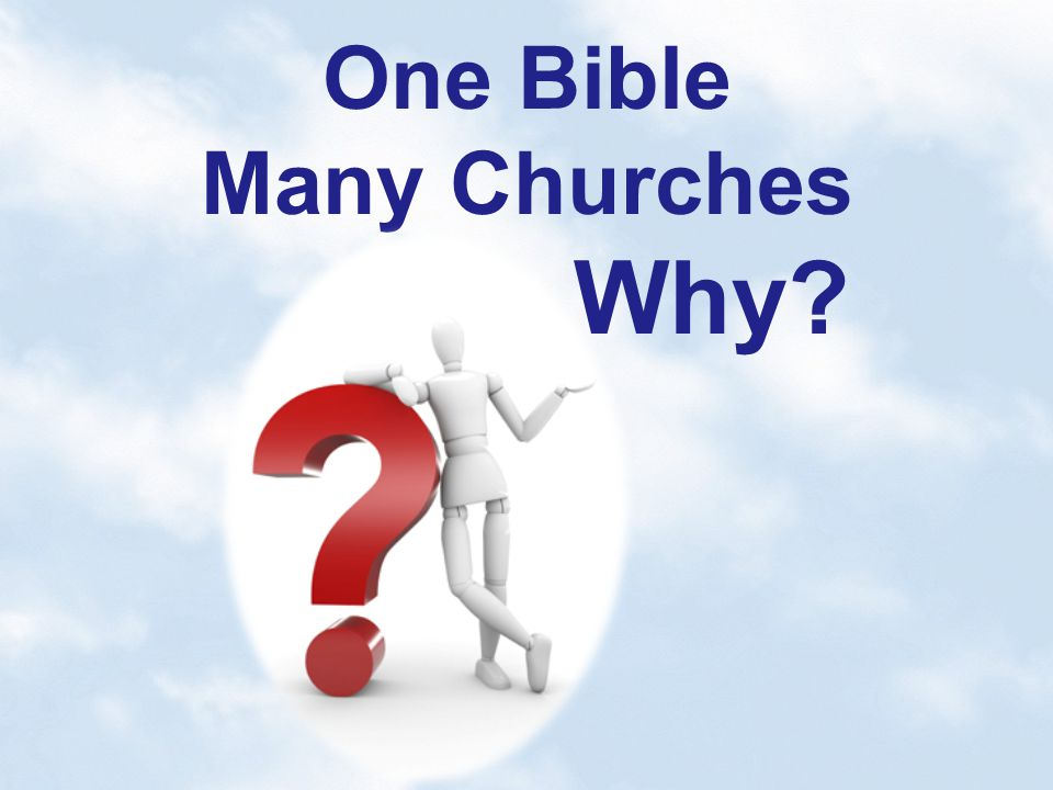 One Bible Many Churches Why?