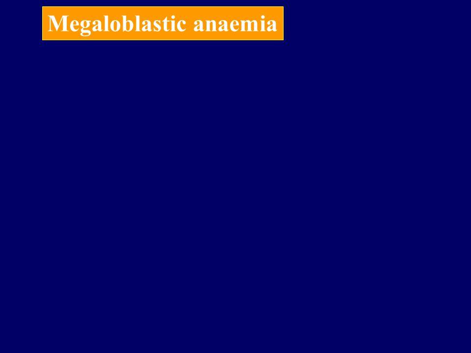 Megaloblastic anaemia