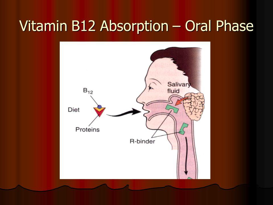 Vitamin B12 Absorption – Oral Phase