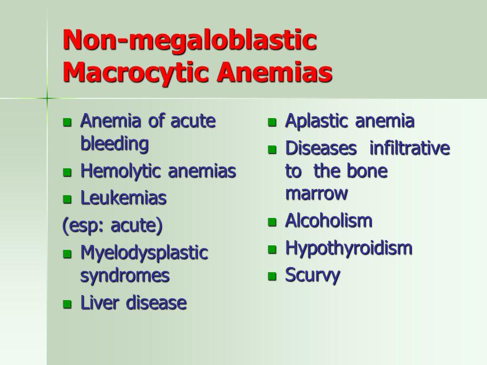 Non-megaloblastic Macrocytic Anemias Anemia of acute bleeding Anemia of acute bleeding Hemolytic anemias Hemolytic anemias Leukemias Leukemias (esp: acute) Myelodysplastic syndromes Myelodysplastic syndromes Liver disease Liver disease Aplastic anemia Aplastic anemia Diseases infiltrative to the bone marrow Diseases infiltrative to the bone marrow Alcoholism Alcoholism Hypothyroidism Hypothyroidism Scurvy Scurvy