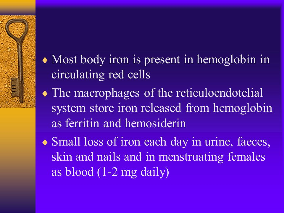  Most body iron is present in hemoglobin in circulating red cells  The macrophages of the reticuloendotelial system store iron released from hemoglobin as ferritin and hemosiderin  Small loss of iron each day in urine, faeces, skin and nails and in menstruating females as blood (1-2 mg daily)