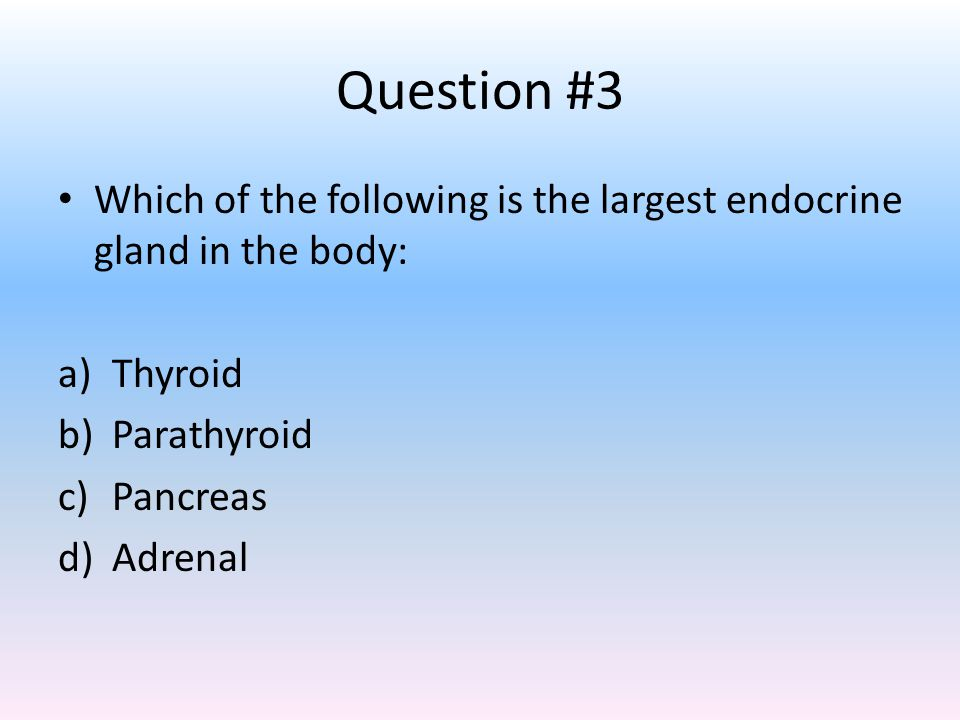 Question #3 Which of the following is the largest endocrine gland in the body: a)Thyroid b)Parathyroid c)Pancreas d)Adrenal