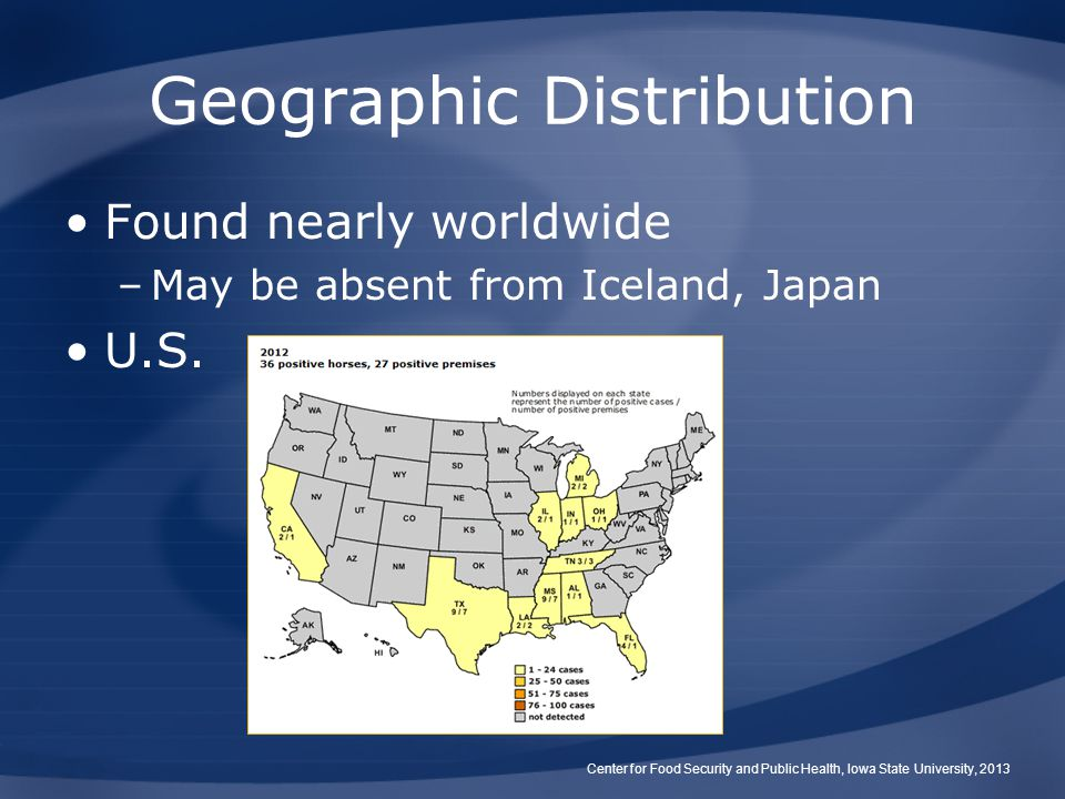 Geographic Distribution Found nearly worldwide –May be absent from Iceland, Japan U.S.
