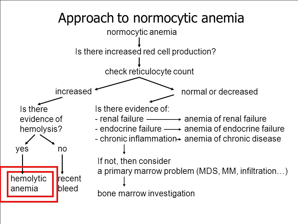Approach to normocytic anemia Is there increased red cell production? check reticulocyte count normocytic anemia increased Is there evidence of hemoly