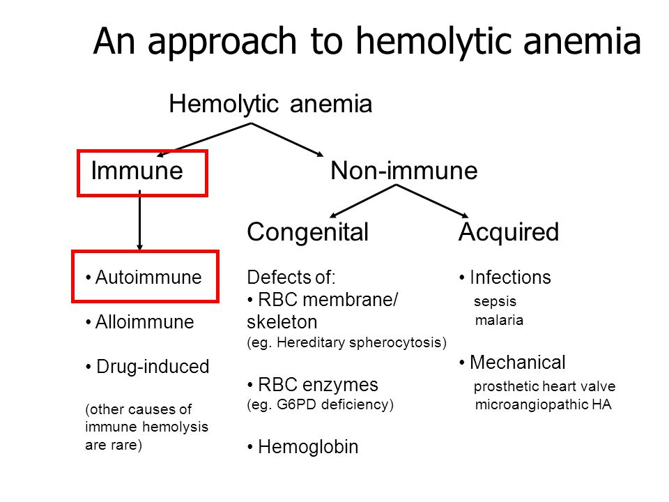 An approach to hemolytic anemia ImmuneNon-immune CongenitalAcquired Defects of: RBC membrane/ skeleton (eg. Hereditary spherocytosis) RBC enzymes (eg.