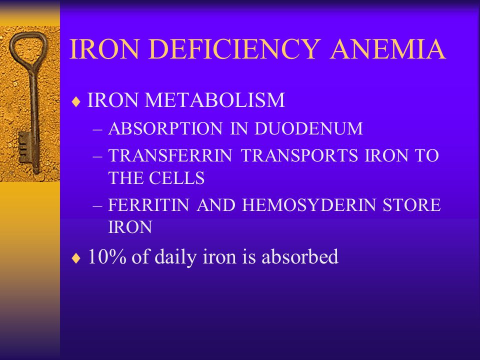 IRON DEFICIENCY ANEMIA  IRON METABOLISM –ABSORPTION IN DUODENUM –TRANSFERRIN TRANSPORTS IRON TO THE CELLS –FERRITIN AND HEMOSYDERIN STORE IRON  10% of daily iron is absorbed
