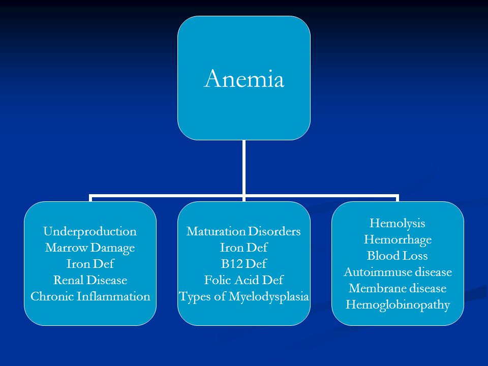 Anemia Underproduction Marrow Damage Iron Def Renal Disease Chronic Inflammation Maturation Disorders Iron Def B12 Def Folic Acid Def Types of Myelody