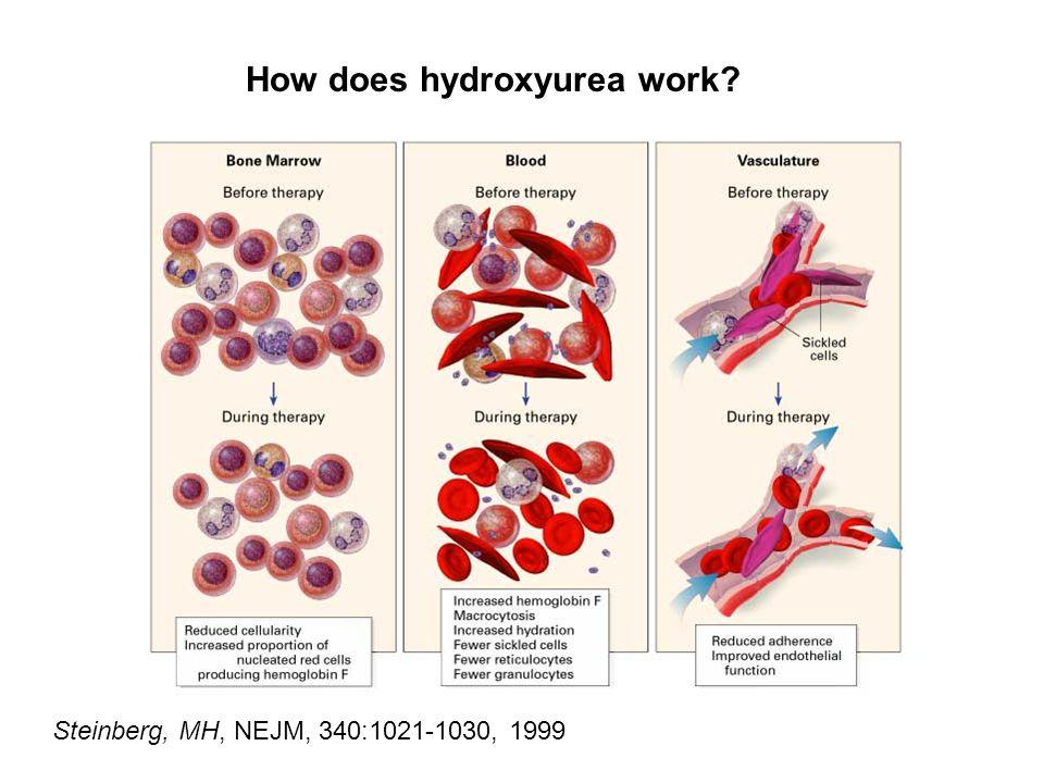 How does hydroxyurea work Steinberg, MH, NEJM, 340:1021-1030, 1999
