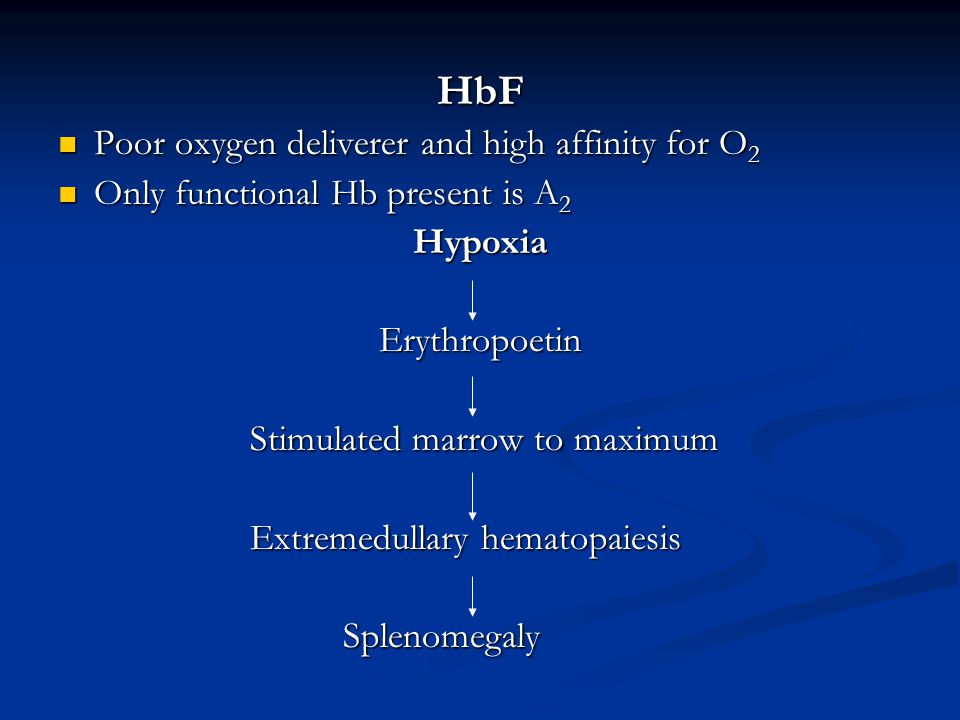 HbF Poor oxygen deliverer and high affinity for O 2 Poor oxygen deliverer and high affinity for O 2 Only functional Hb present is A 2 Only functional