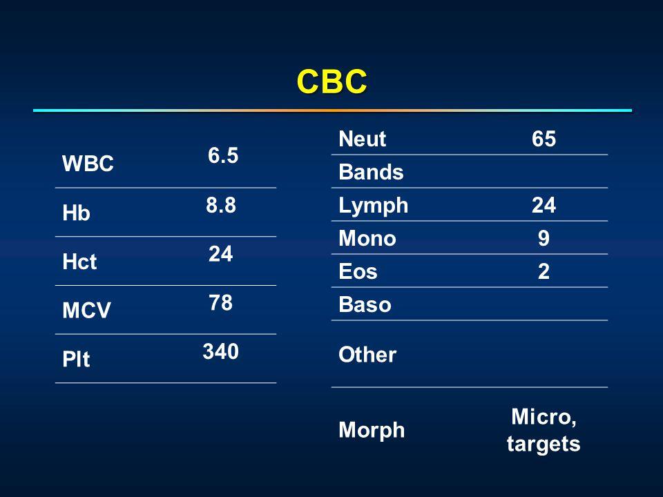 WBC 6.5 Hb 8.8 Hct 24 MCV 78 Plt 340 Neut65 Bands Lymph24 Mono9 Eos2 Baso Other Morph Micro, targets CBC