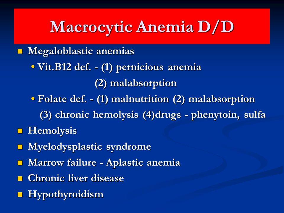 Macrocytic Anemia D/D Megaloblastic anemias Megaloblastic anemias Vit.B12 def.