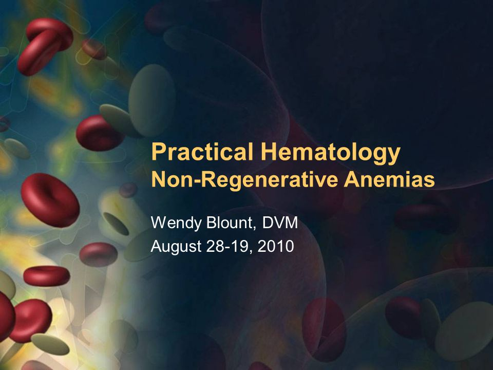 Practical Hematology Non-Regenerative Anemias Wendy Blount, DVM August 28-19, 2010