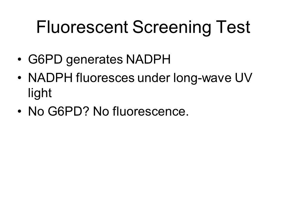 Fluorescent Screening Test G6PD generates NADPH NADPH fluoresces under long-wave UV light No G6PD.