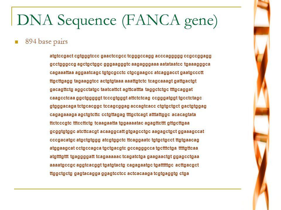 DNA Sequence (FANCA gene) atgtccgact cgtgggtccc gaactccgcc tcgggccagg acccaggggg ccgccggagg gcctgggccg agctgctggc gggaagggtc aagagggaaa aatataatcc tga