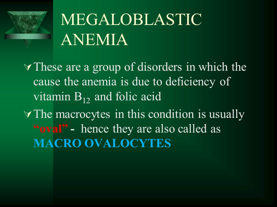 MEGALOBLASTIC ANEMIA  These are a group of disorders in which the cause the anemia is due to deficiency of vitamin B 12 and folic acid  The macrocytes in this condition is usually oval - hence they are also called as MACRO OVALOCYTES