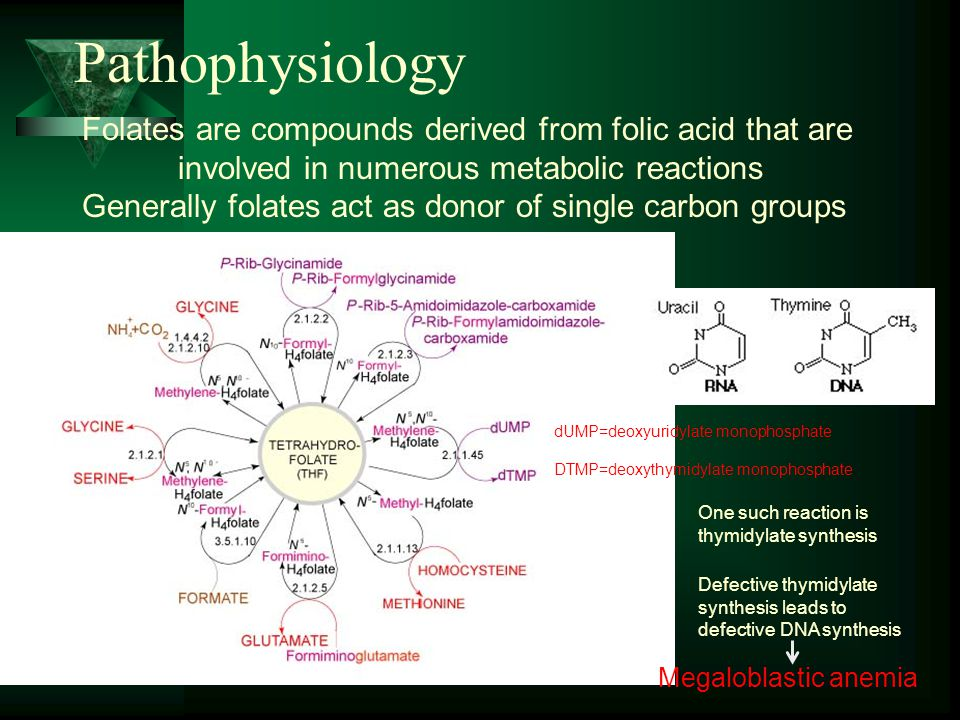 Pathophysiology Folates are compounds derived from folic acid that are involved in numerous metabolic reactions Generally folates act as donor of sing