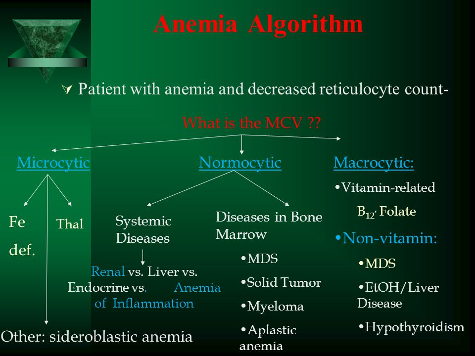 Anemia Algorithm  Patient with anemia and decreased reticulocyte count- What is the MCV ?? Microcytic Fe def. Thal NormocyticMacrocytic: Vitamin-rela