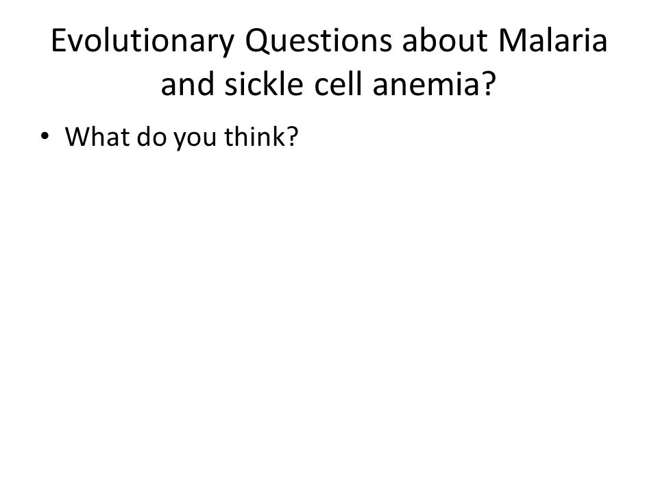 Evolutionary Questions about Malaria and sickle cell anemia What do you think
