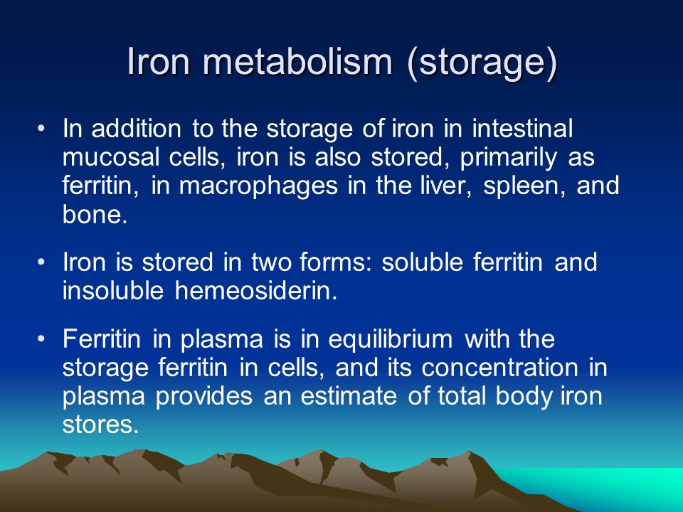Iron metabolism (storage) In addition to the storage of iron in intestinal mucosal cells, iron is also stored, primarily as ferritin, in macrophages i
