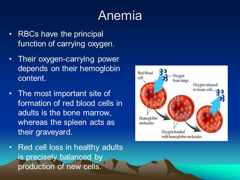 Anemia RBCs have the principal function of carrying oxygen.