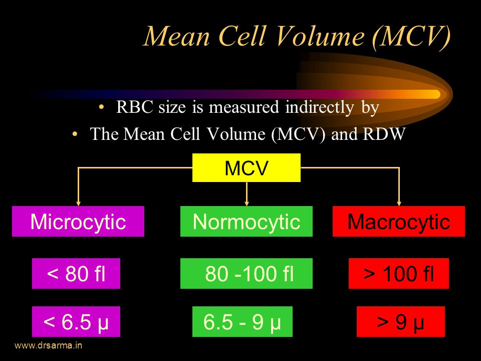 www.drsarma.in Mean Cell Volume (MCV) RBC size is measured indirectly by The Mean Cell Volume (MCV) and RDW Microcytic < 80 fl MCV NormocyticMacrocytic 80 -100 fl> 100 fl < 6.5 µ6.5 - 9 µ> 9 µ