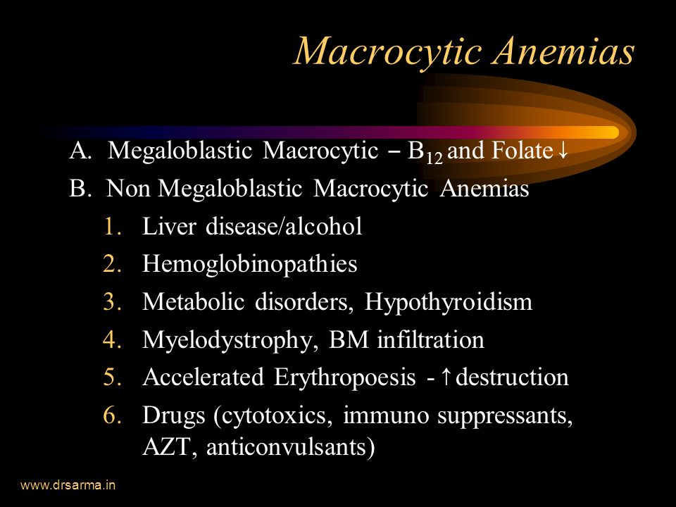 www.drsarma.in Macrocytic Anemias A. Megaloblastic Macrocytic – B 12 and Folate ↓ B. Non Megaloblastic Macrocytic Anemias 1.Liver disease/alcohol 2.He