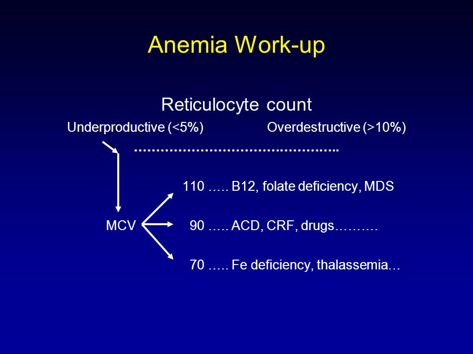 Anemia Work-up Reticulocyte count Underproductive ( 10%) ………………………………………..