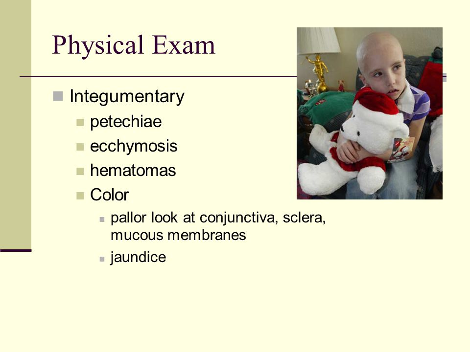 Physical Exam Integumentary petechiae ecchymosis hematomas Color pallor look at conjunctiva, sclera, mucous membranes jaundice