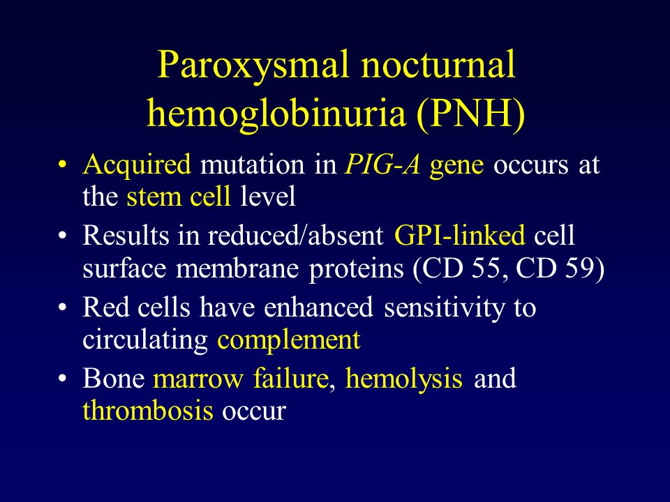 Paroxysmal nocturnal hemoglobinuria (PNH) Acquired mutation in PIG-A gene occurs at the stem cell level Results in reduced/absent GPI-linked cell surface membrane proteins (CD 55, CD 59) Red cells have enhanced sensitivity to circulating complement Bone marrow failure, hemolysis and thrombosis occur